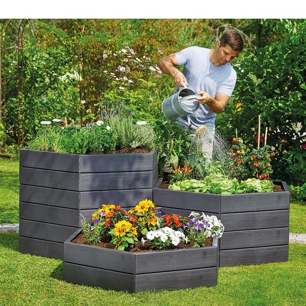 rhodohypoxis semer planter entretenir faire les graines avec jaime. Black Bedroom Furniture Sets. Home Design Ideas