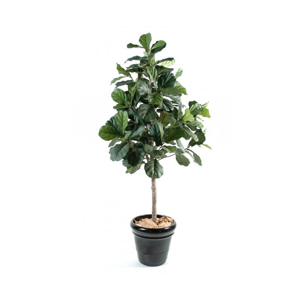 Ficus Lyrata artificiel sur tige