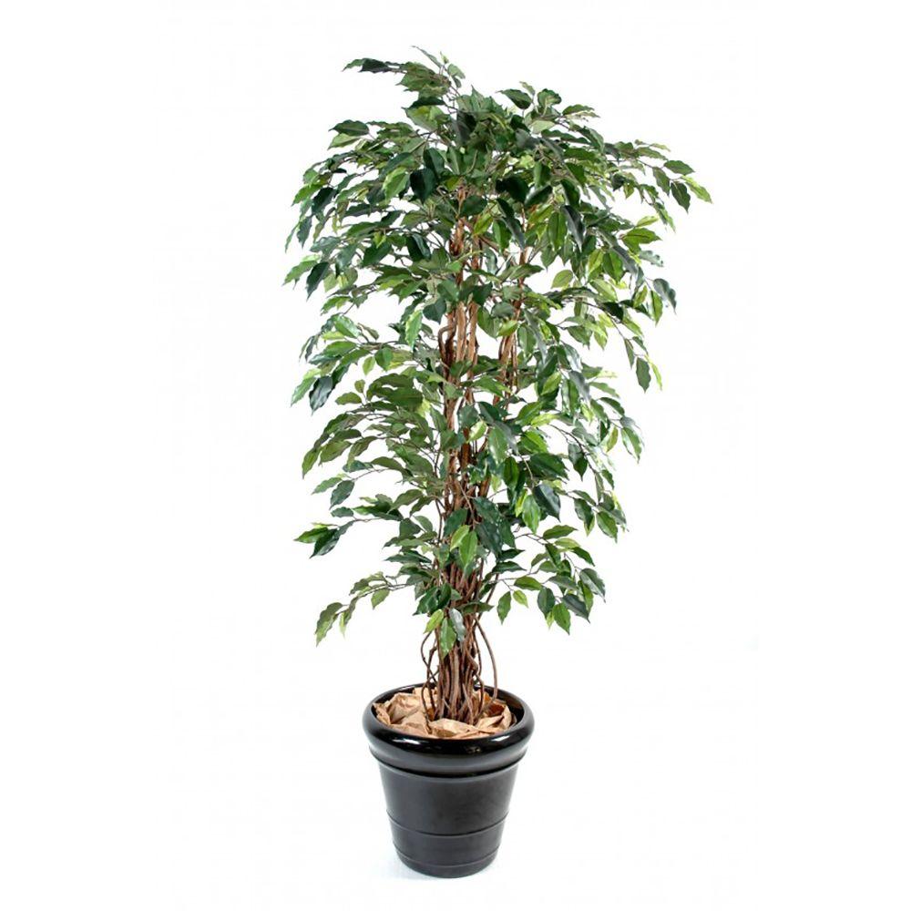 ficus lianes grandes feuilles h150cm tronc naturel feuillage artificiel non rempot hauteur. Black Bedroom Furniture Sets. Home Design Ideas