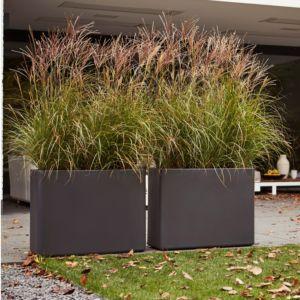 grand bac pour plantes exterieur