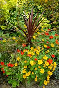 Décor de pots pour terrasse fleurie | Gamm vert