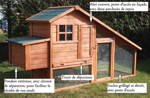 choisir l 39 habitat des poules poulailler et parcours. Black Bedroom Furniture Sets. Home Design Ideas