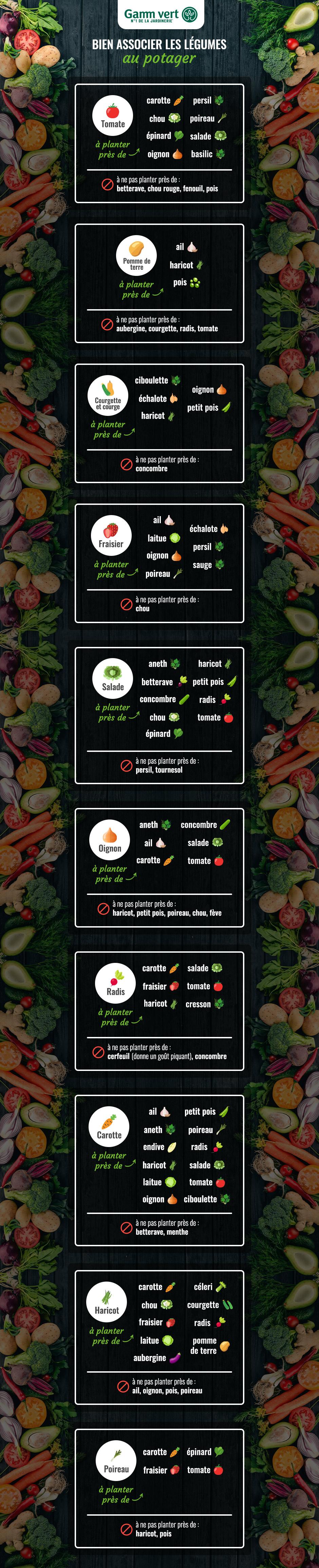 Legumes A Mettre Dans Le Jardin bien associer les légumes au potager | gamm vert