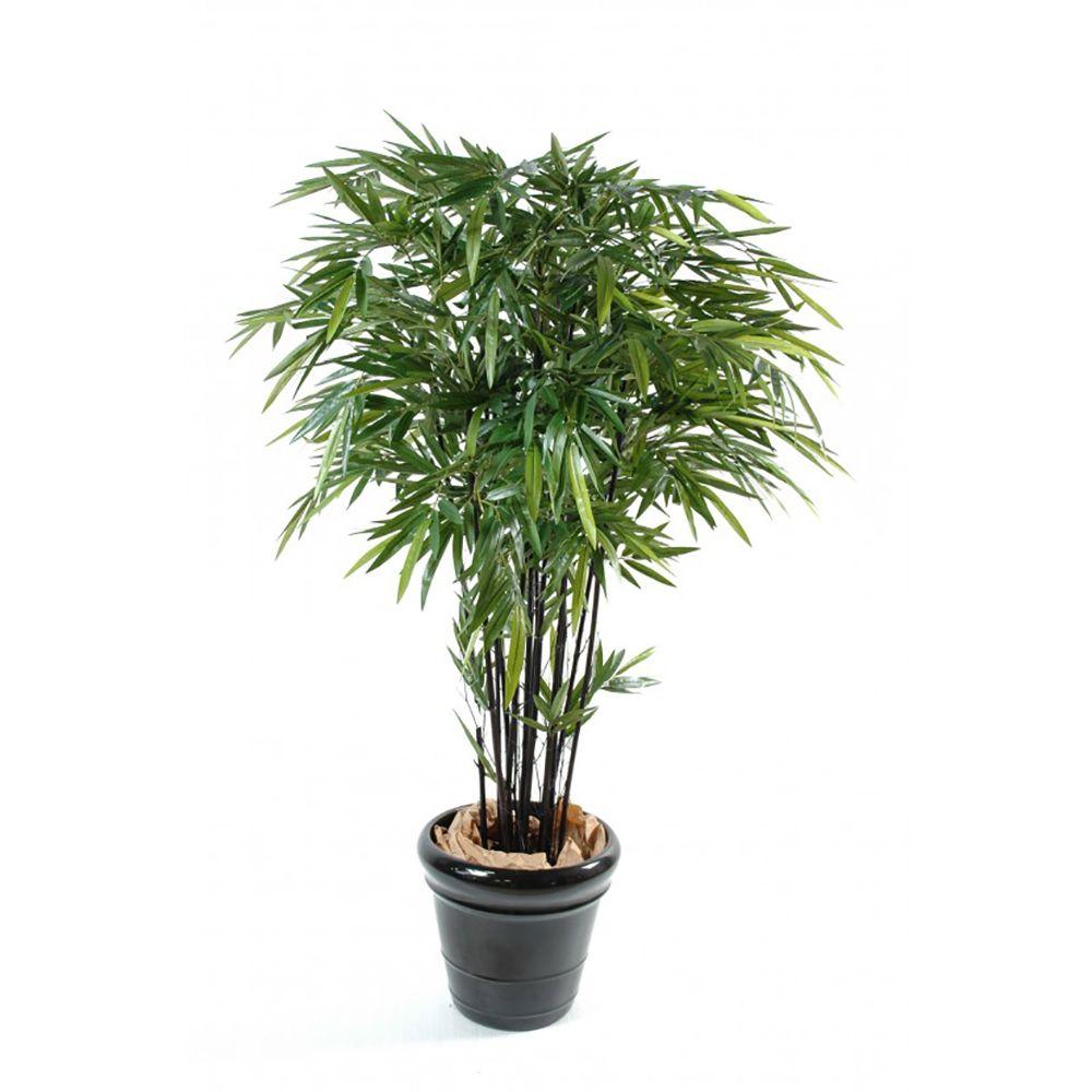 Bambou à cannes noires H210cm (chaumes naturels, feuillage artificiel) non rempoté