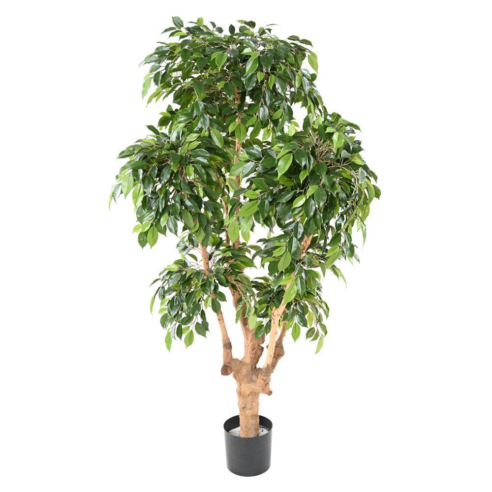 Ficus Natasja 5 têtes H170cm (tronc naturel, feuillage artificiel) non rempoté