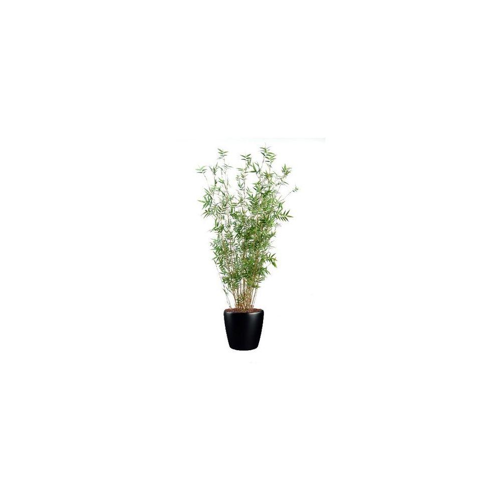 Bambou oriental multi-chaumes H160cm, pot Lechuza noir