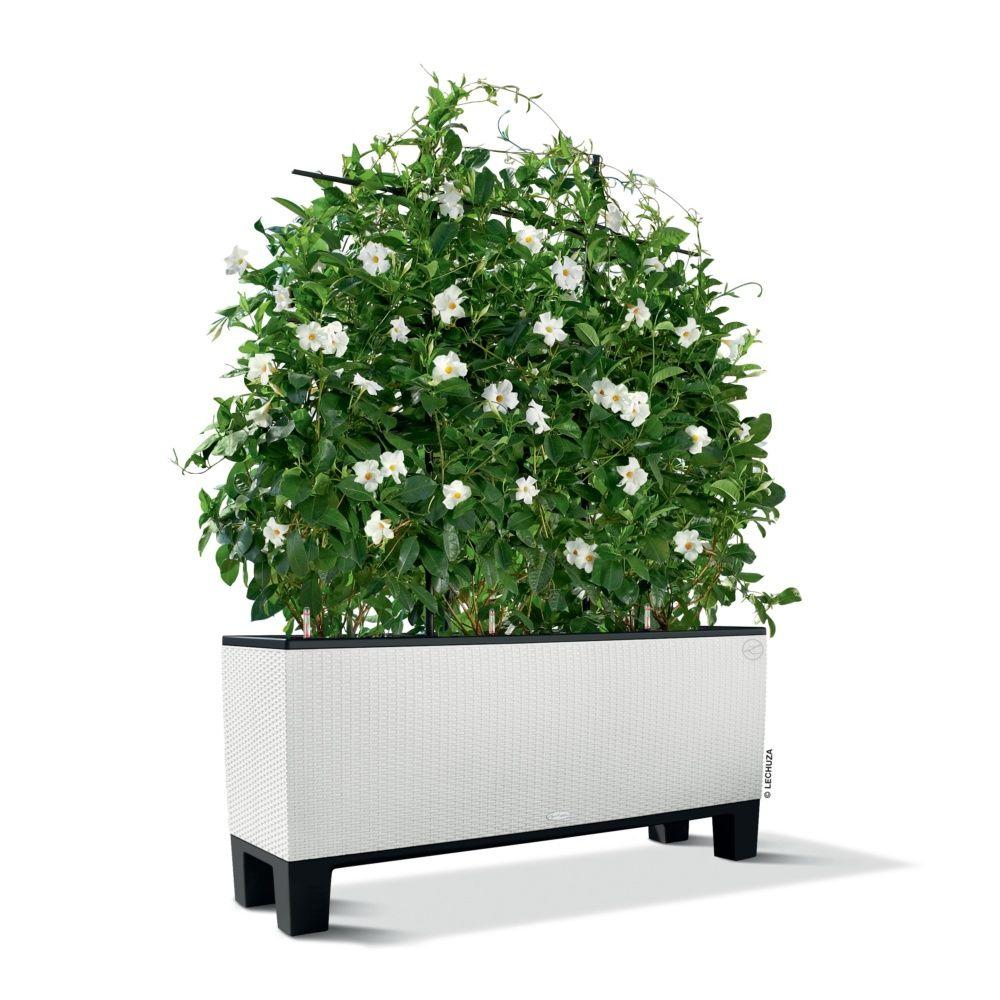 socle pour jardini re lechuza trio cottage 40 noir gamm vert. Black Bedroom Furniture Sets. Home Design Ideas