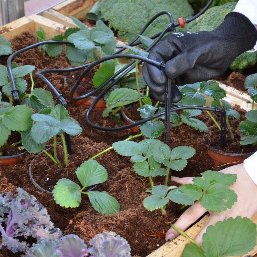 Lankater Oiseaux Irrigation Goutte /À Goutte en Plastique Irrigation Horticulture V/ég/étale Humidit/é Dirrigation des Plantes P/ériph/ériques Couleur Al/éatoire