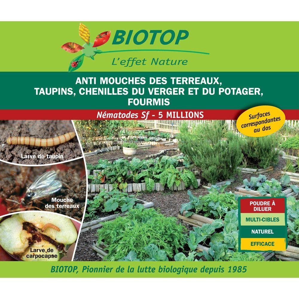 Nématode Sf 5 millions contre chenilles du potager - Biotop