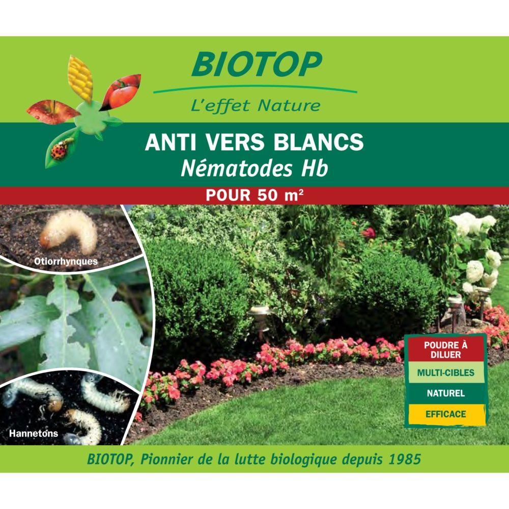 Nématodes Hb contre les vers blancs (25 millions) - Biotop
