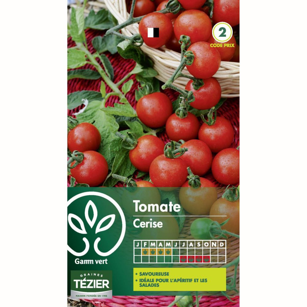 Tomate En Pot Conseil tomate cerise