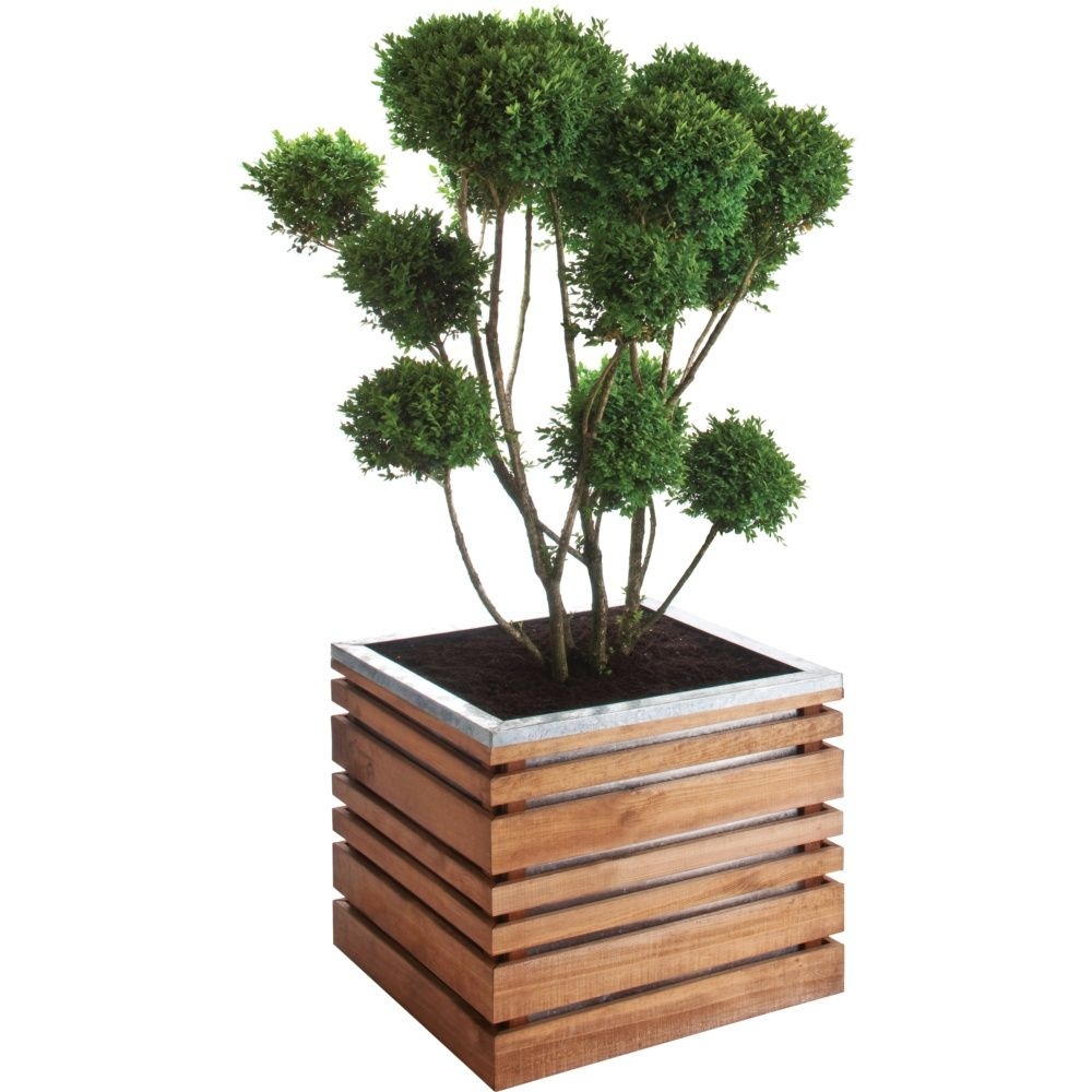 Bac à fleurs bois traité autoclave lignZ L60 H50 cm