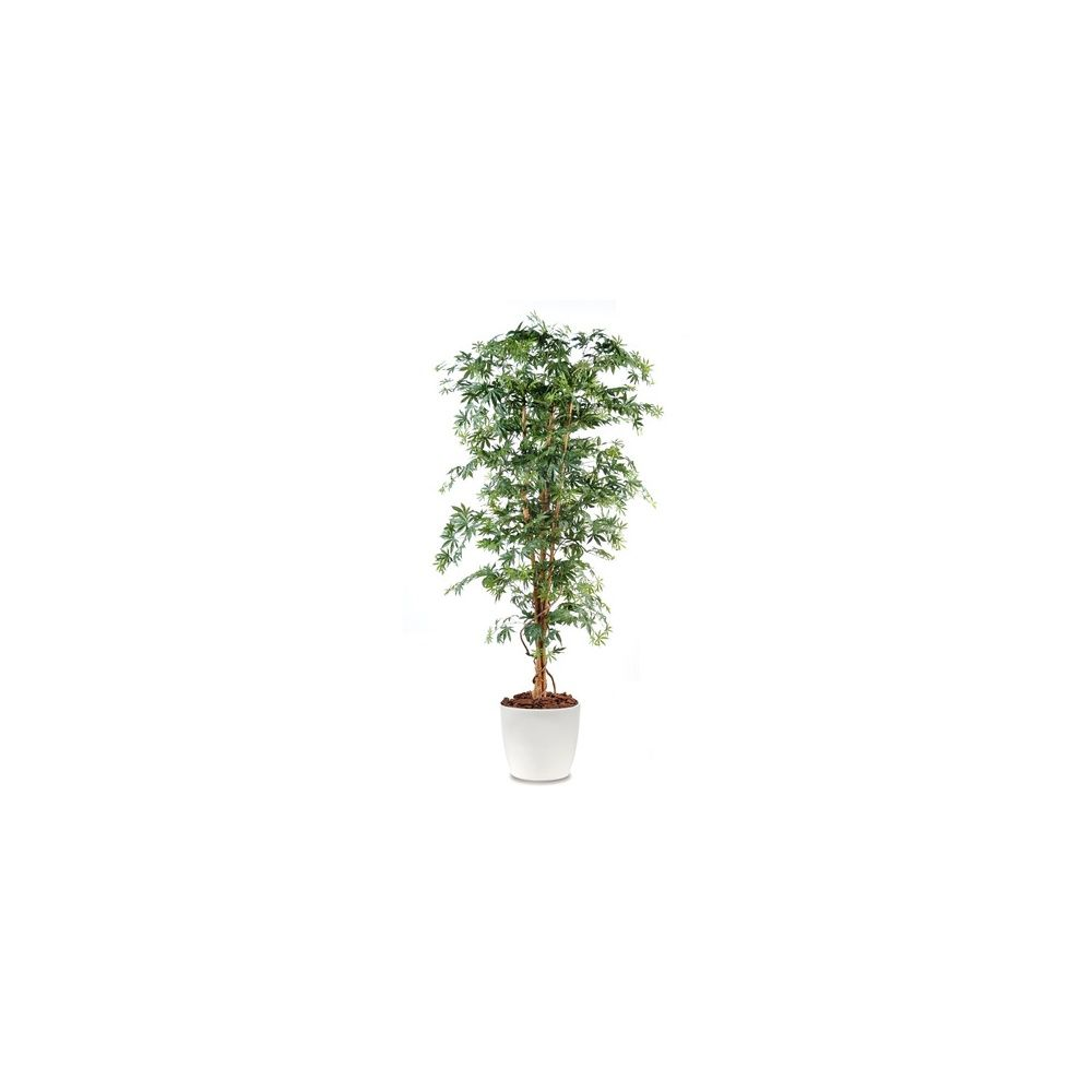 Aralia grandes feuilles H180cm (tronc naturel, feuillage artificiel) avec pot Elho blanc