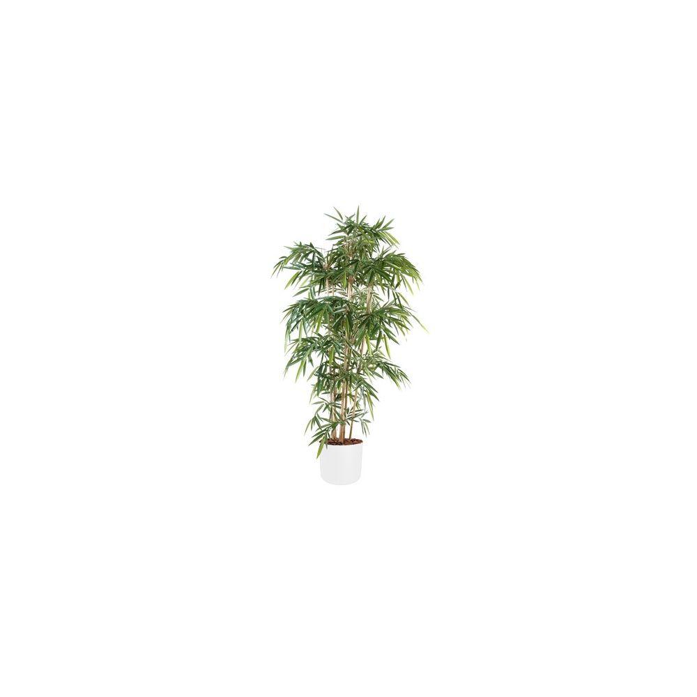 Bambou 6 chaumes H120cm (chaumes naturels, feuillage artificiel) avec pot Elho blanc