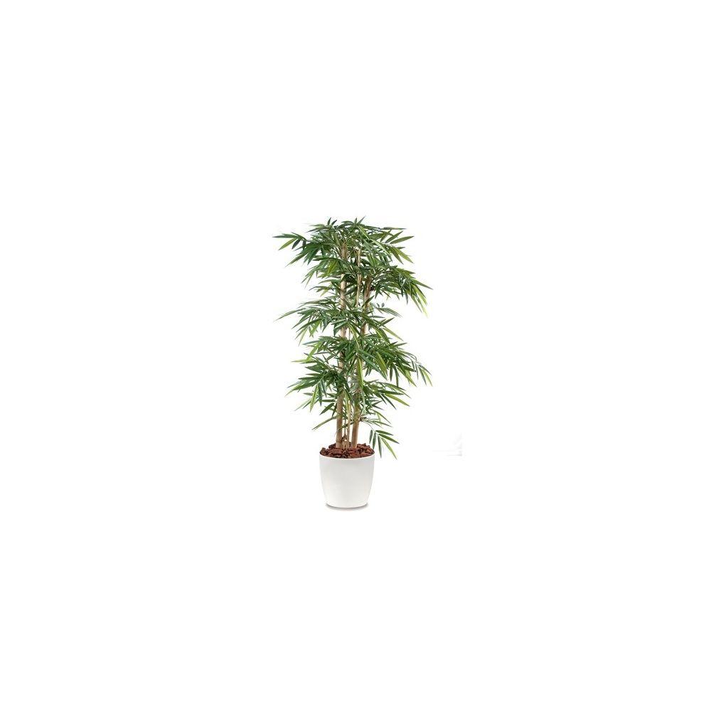 Bambou grosses cannes H150 cm (cannes naturelles, feuillage artificiel) pot Elho blanc