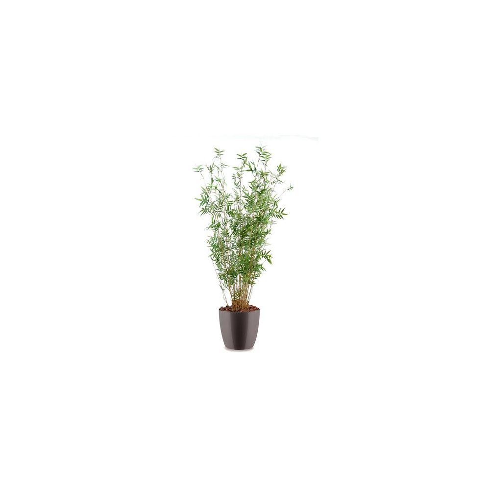 Bambou oriental multi-chaumes H160cm (chaumes naturels, feuillage artificiel) pot Elho gris