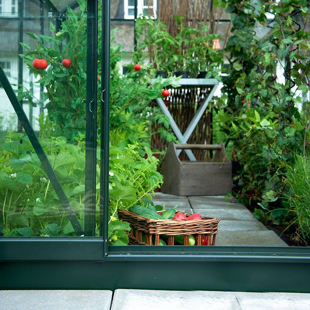 Serre de jardin Supreme verre trempé 5 m² vert + embase - Halls 6 ...