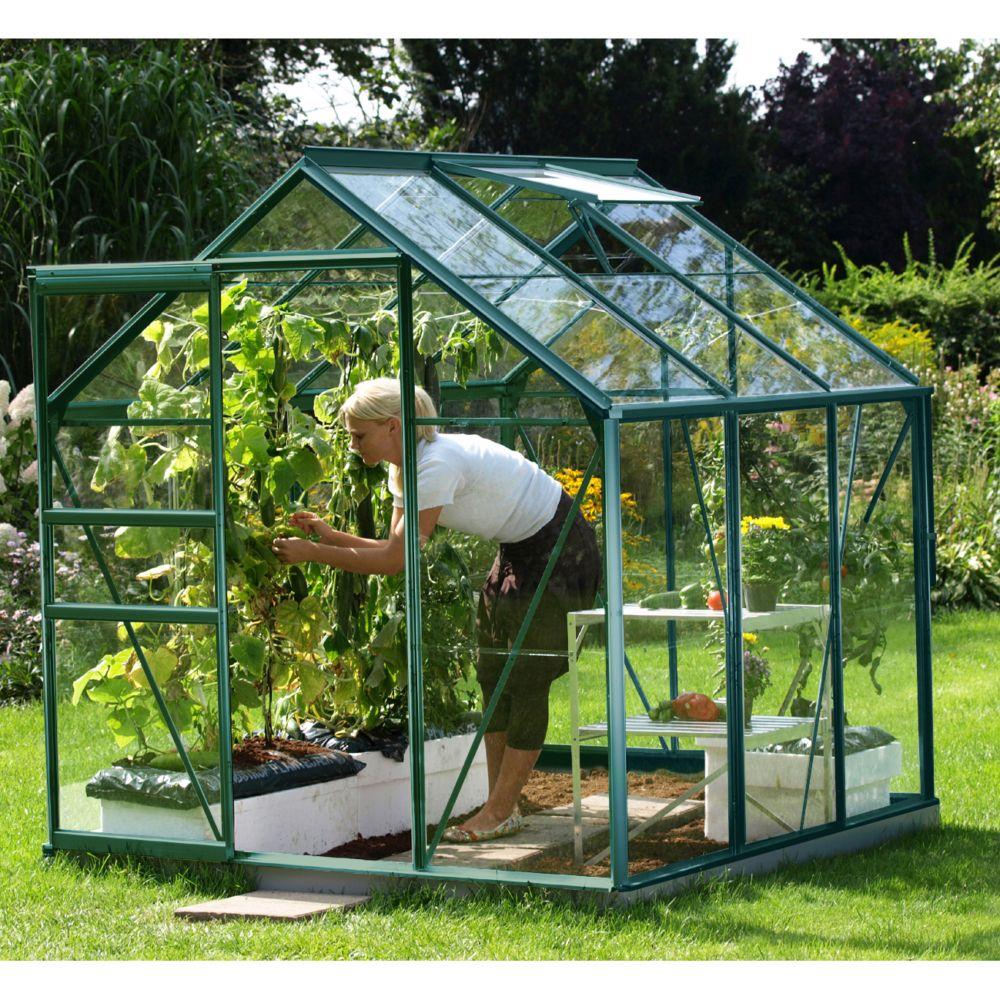 Serre en verre trempé Allium vert 3.70 m² - Lams