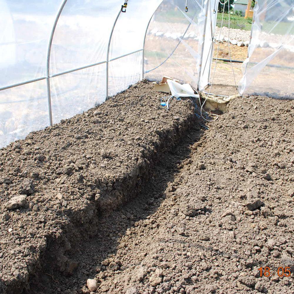 Serre de jardin - Bâche polyéthylène transparente 6 x 10 m - Serre de jardin GammVert