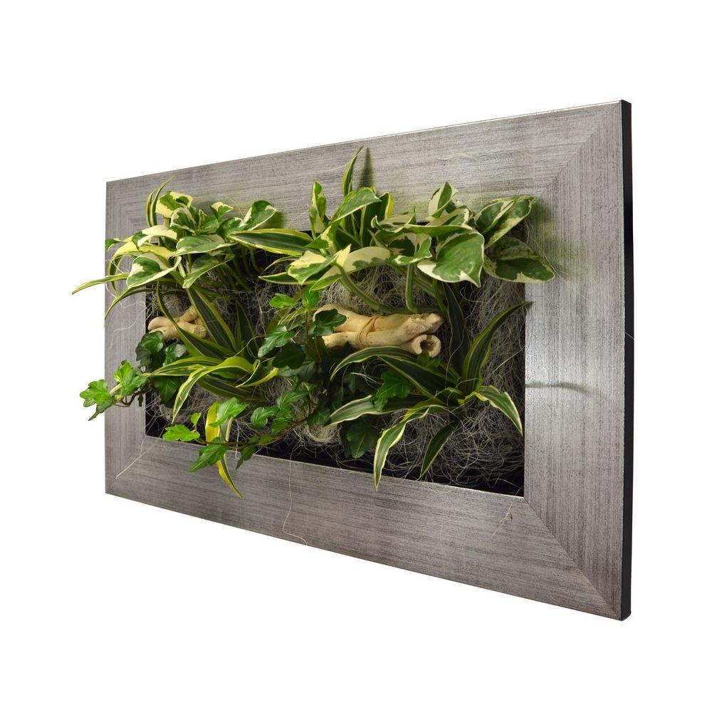 Plantes Pour Tableau Végétal Intérieur tableau végétal wallflower kyoto alu brossé m