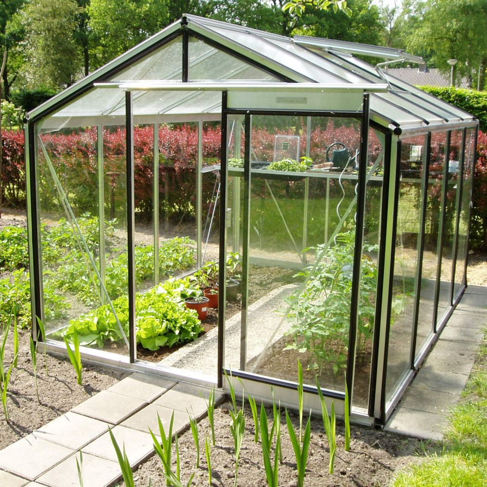 Serre en verre trempé alu 6.91 m² Prestige + Embase