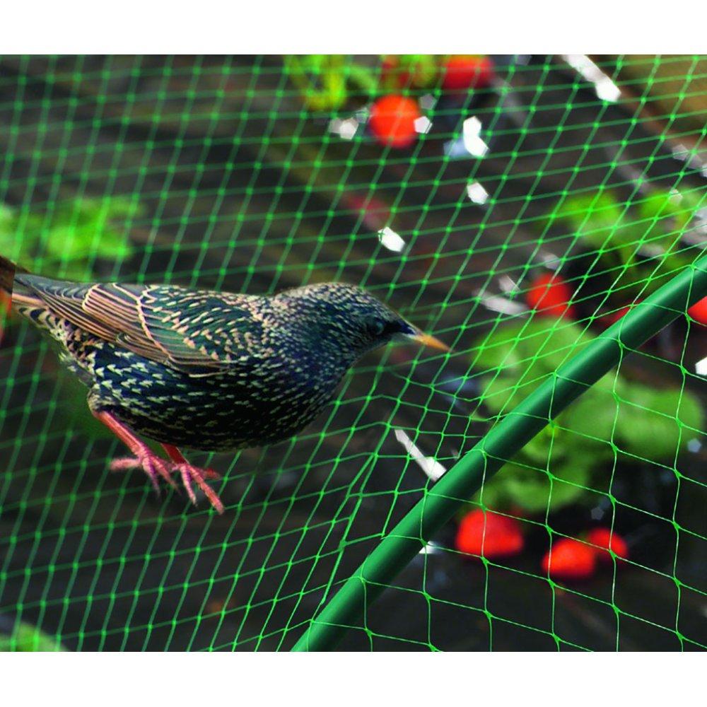 Filet Protection Oiseau Birdnet 5m 5m Nortene Gamm Vert