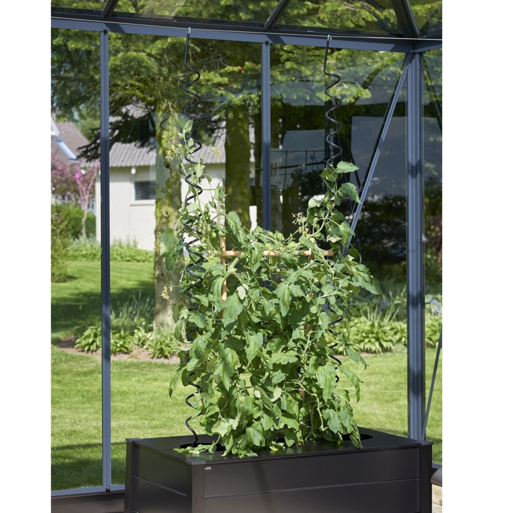 Serre de jardin - Lot de 3 tuteurs spirales pour plantes grimpantes - Juliana - Serre de jardin GammVert