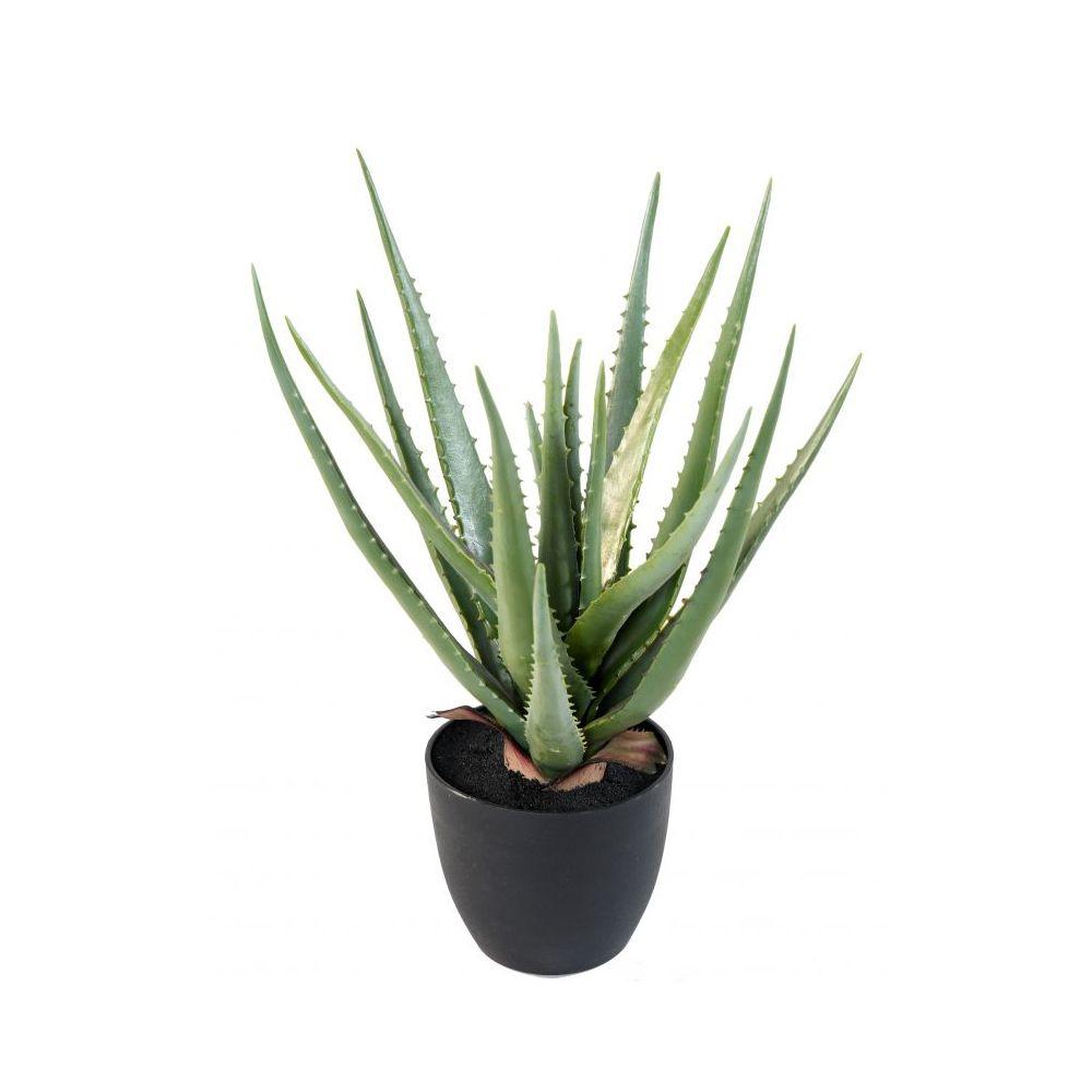 Aloe artificiel