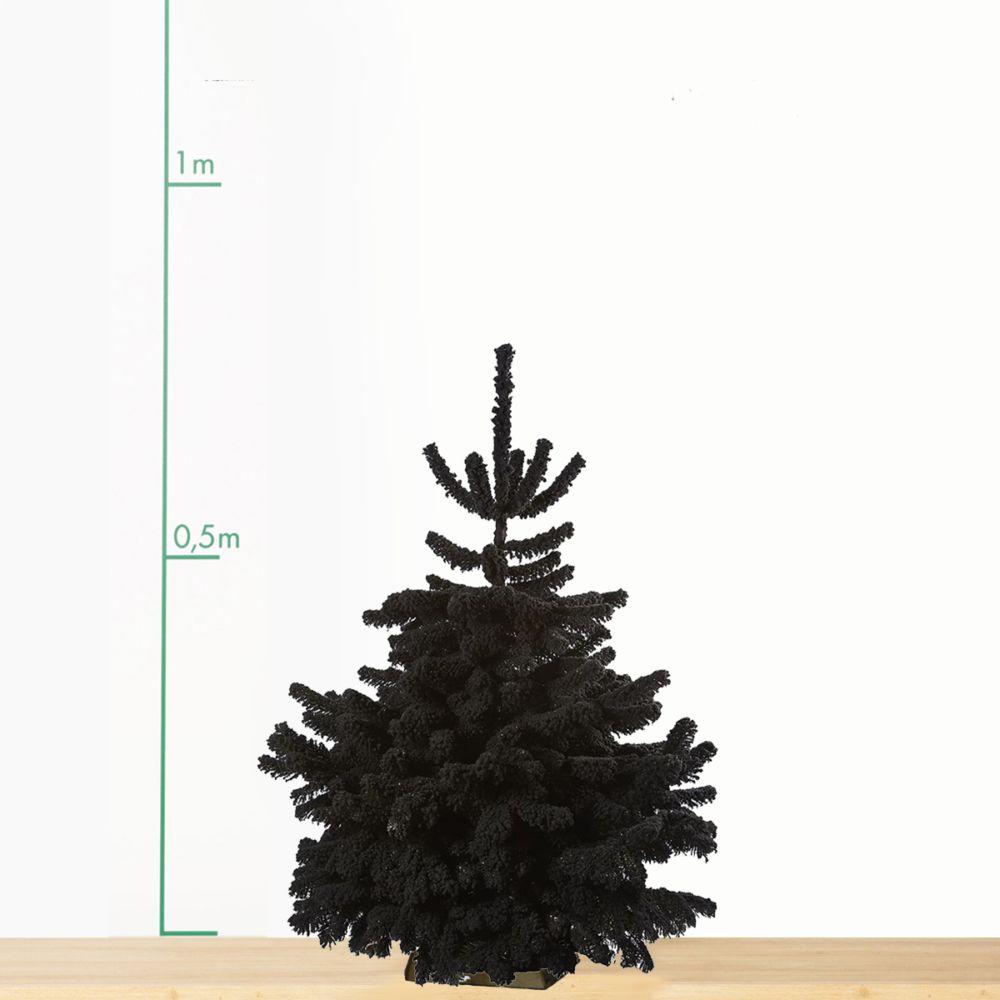 sapin de no l nordmann floqu noir 70 90 cm livraison. Black Bedroom Furniture Sets. Home Design Ideas
