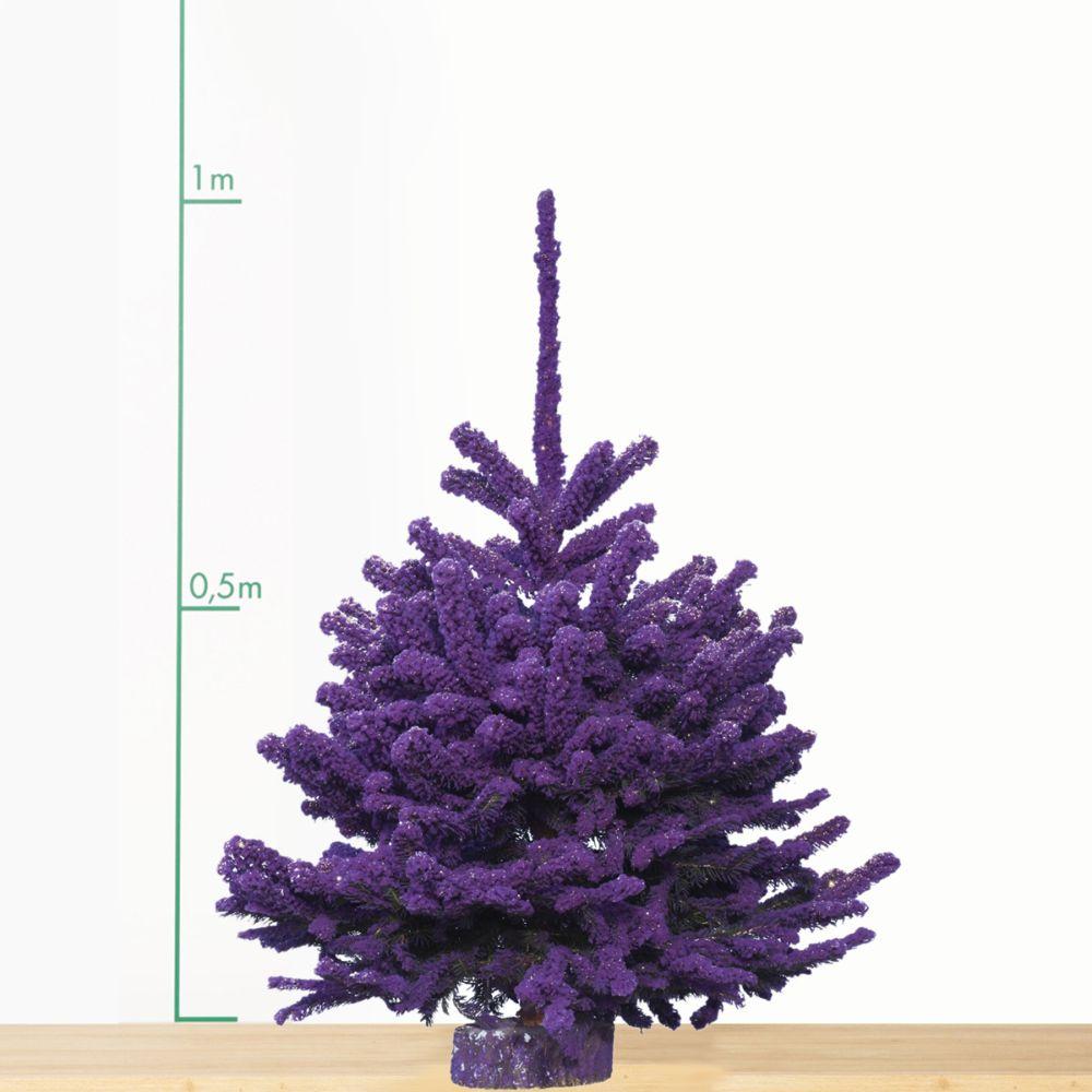 Sapin de Noël Nordmann floqué violet 90/110 cm. Livraison incluse.