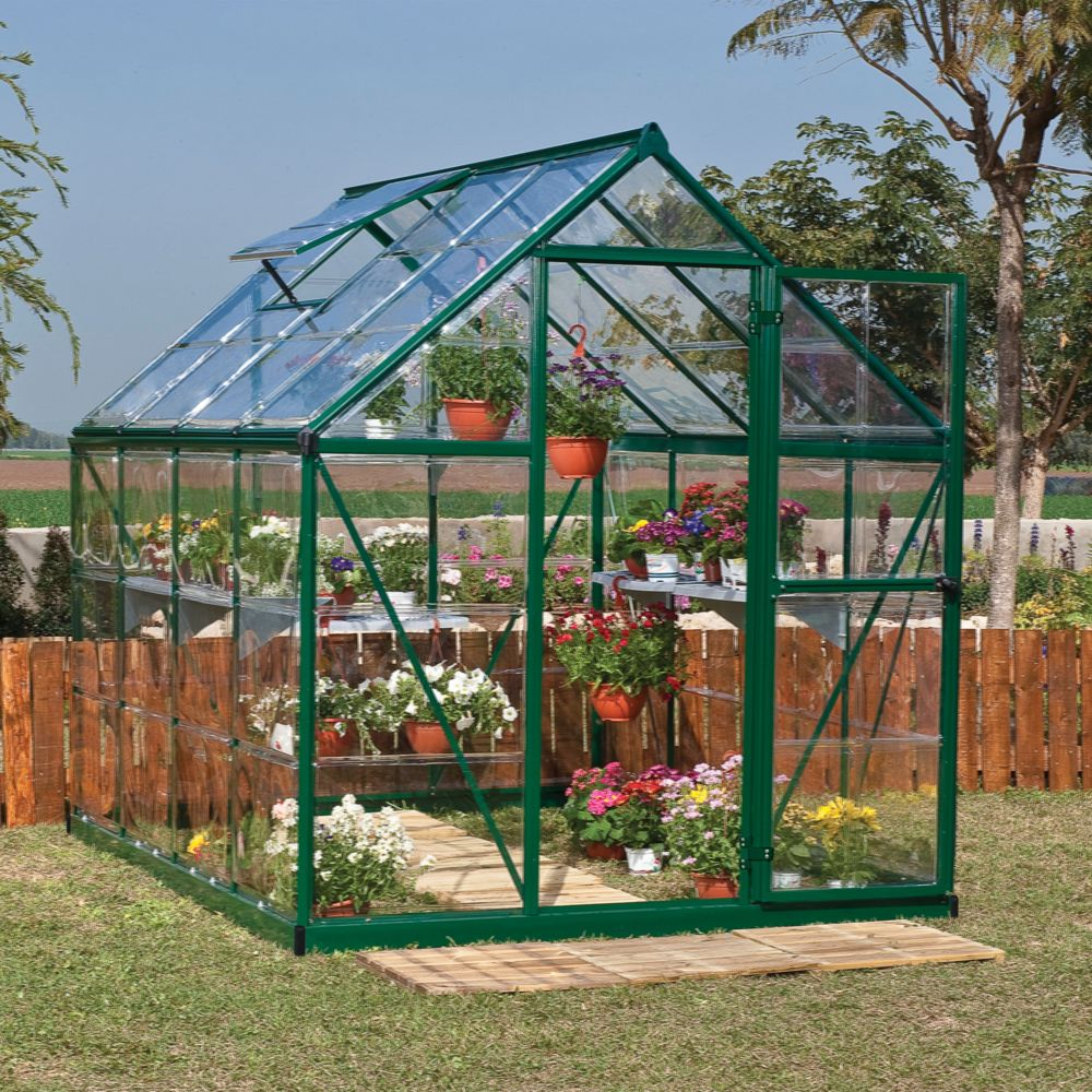Serre polycarbonate Harmony vert 4.6 m² - Palram