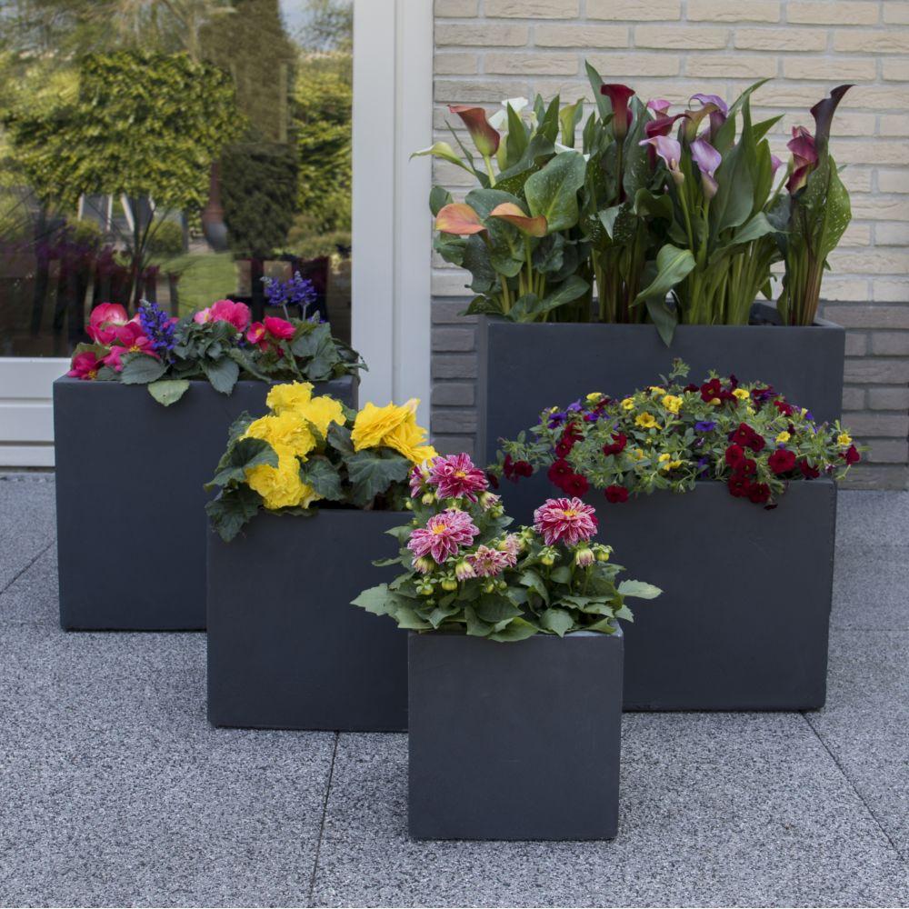 Bac à fleurs fibre de terre Clayfibre Cubi L23 H23 cm gris