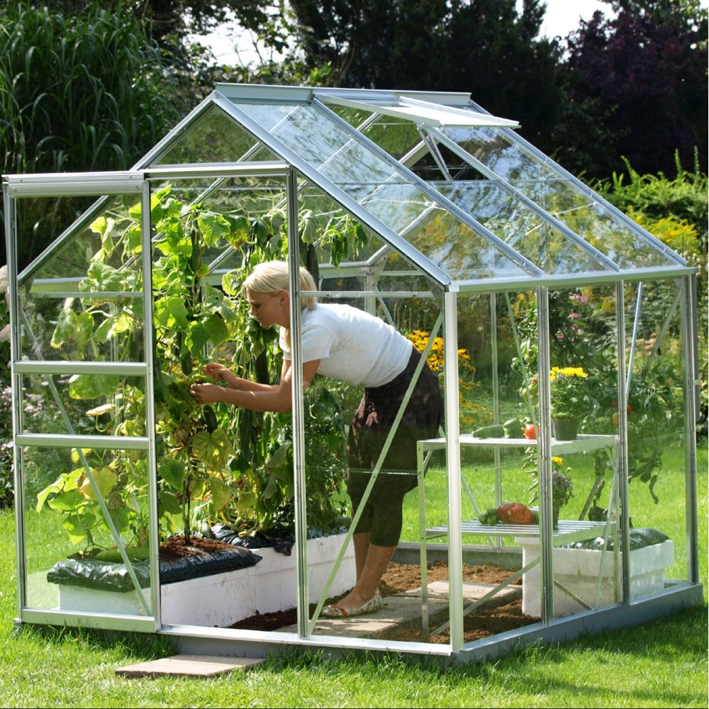 Serre en verre trempé Allium alu 3,80 m² - Lams
