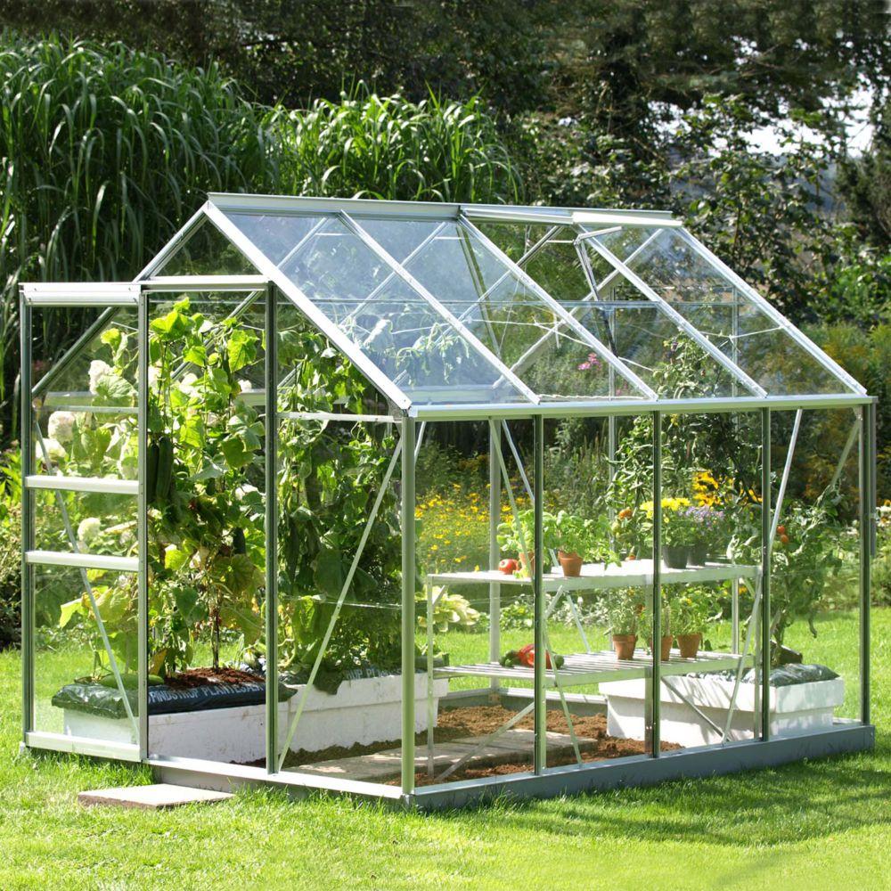 Serre en verre trempé Allium alu 5 m² - Lams