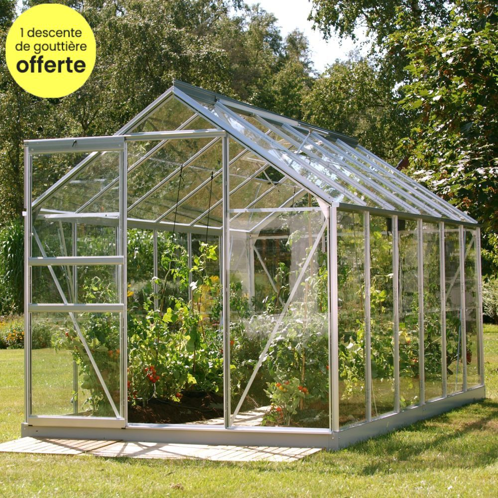 Serre en verre trempé Allium alu 7.30 m² - Lams