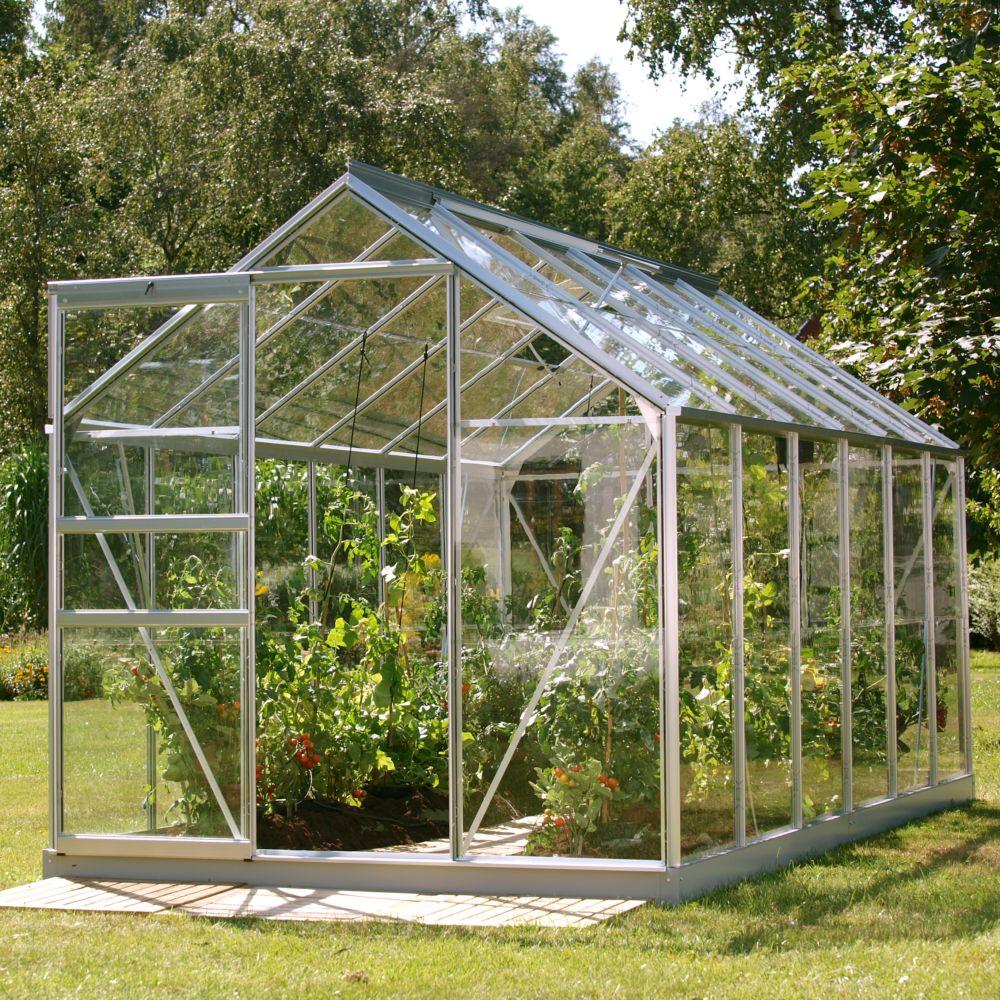 Serre en verre trempé Allium alu 7.40 m² - Lams