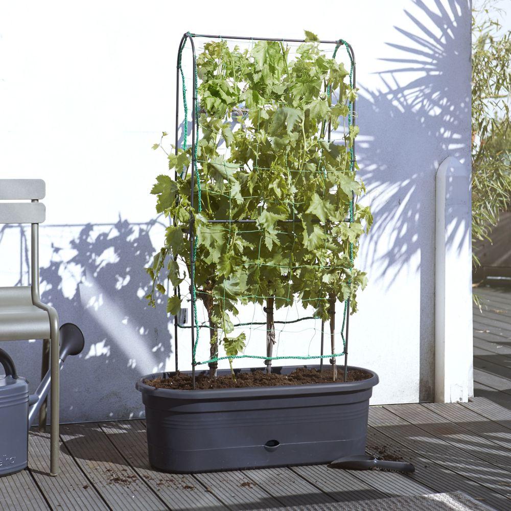 Jardinière avec treillis H130 x L78 cm Elho