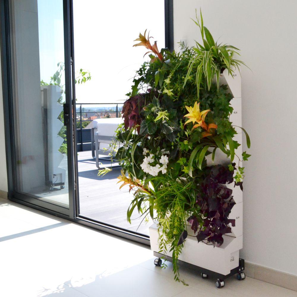 Support végétal Home Garden - Jardibric