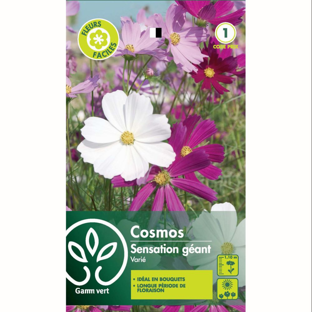 Cosmos sensation géant mix