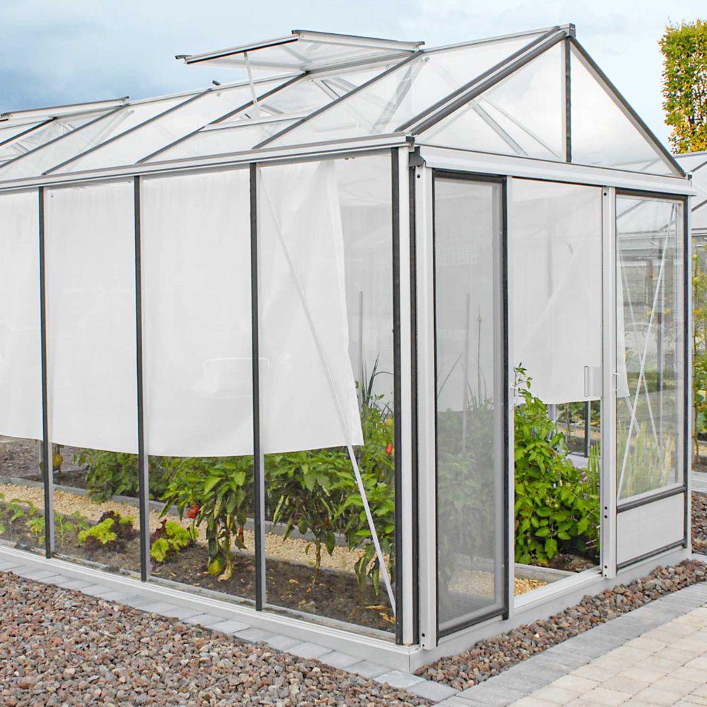 Serre en verre trempé Luxia alu 12,50 m² - Lams
