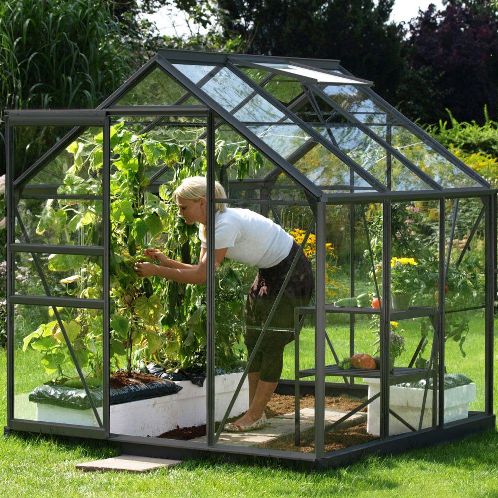 Serre de jardin - Serre en verre trempé Allium anthracite 3.70 m² - Lams - Serre de jardin GammVert