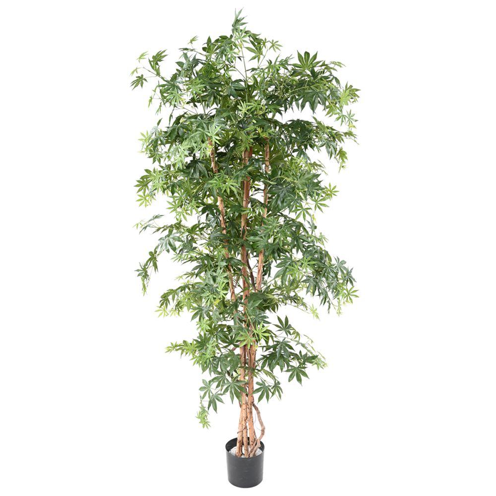 Aralia grandes feuilles H180cm (tronc naturel, feuillage artificiel) non rempoté