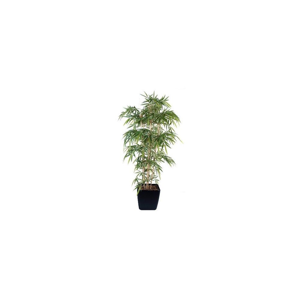 Bambou 7 chaumes H210 cm, pot Lechuza noir